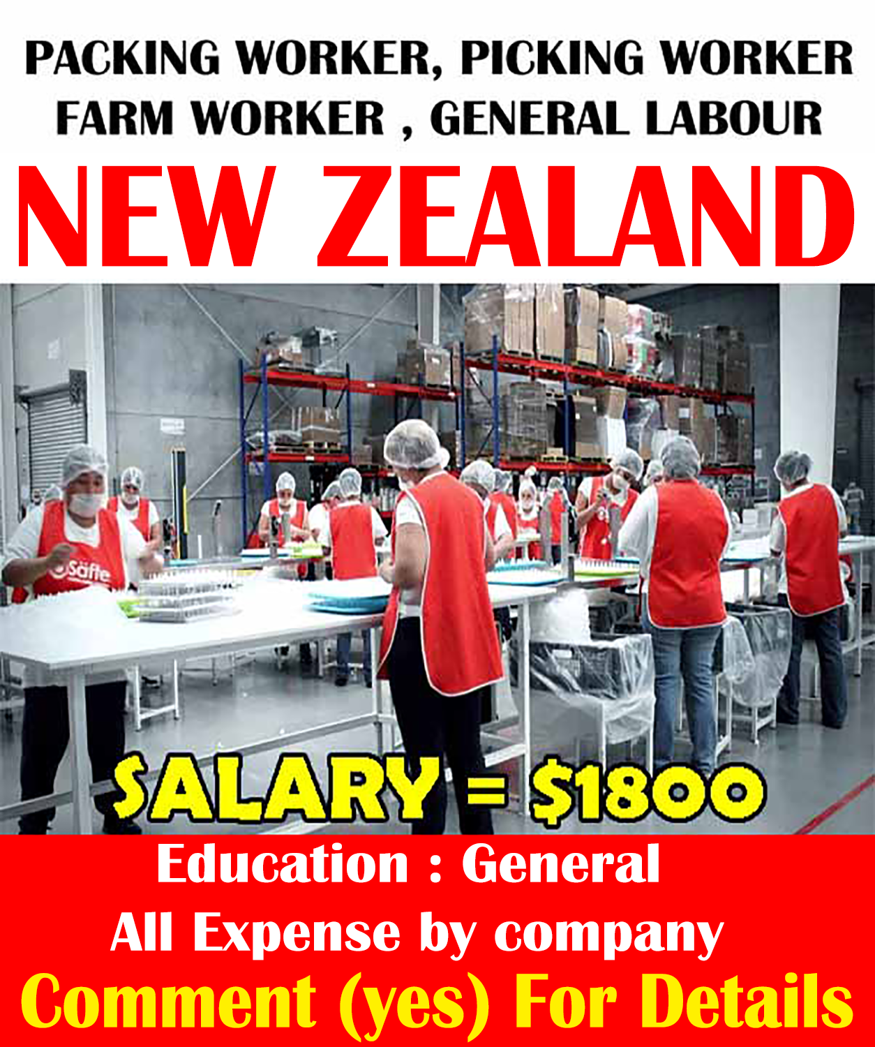 Pick Packers Jobs In New Zealand