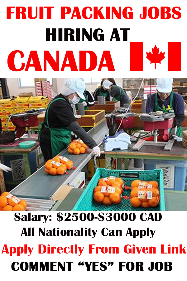 Fruit Packing Jobs in Canada