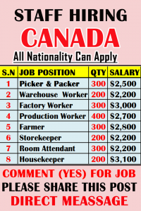 Work chance in Canada