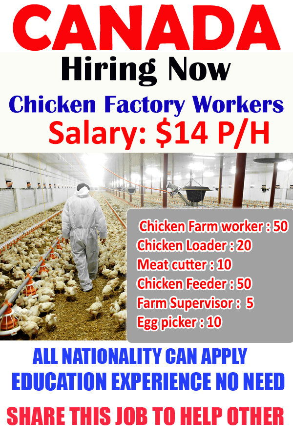 Chicken Factory farm worker wanted in Canada