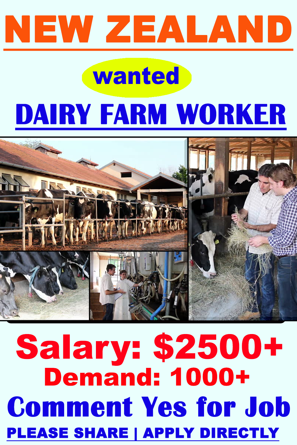 Dairy Farm Workers in New Zealand