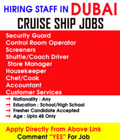 Security Jobs On Cruise Ship