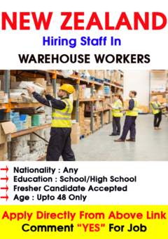 New Zealand Warehouse job Apply Now