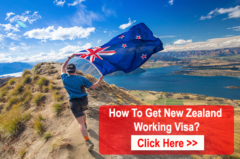 How To Get New Zealand Working Visa?