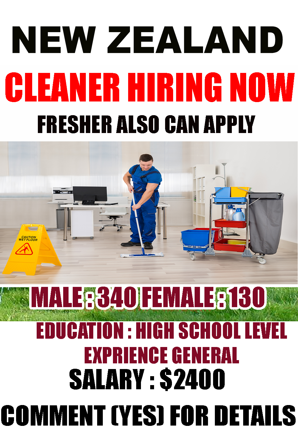 Domestic Cleaner Job in New Zealand